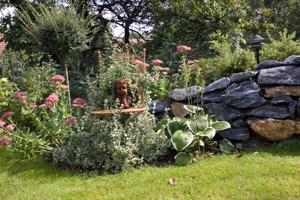 Garten NÖ